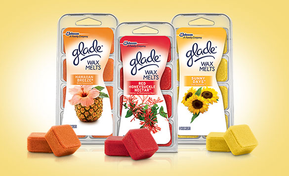 glade wax melts warmer instructions