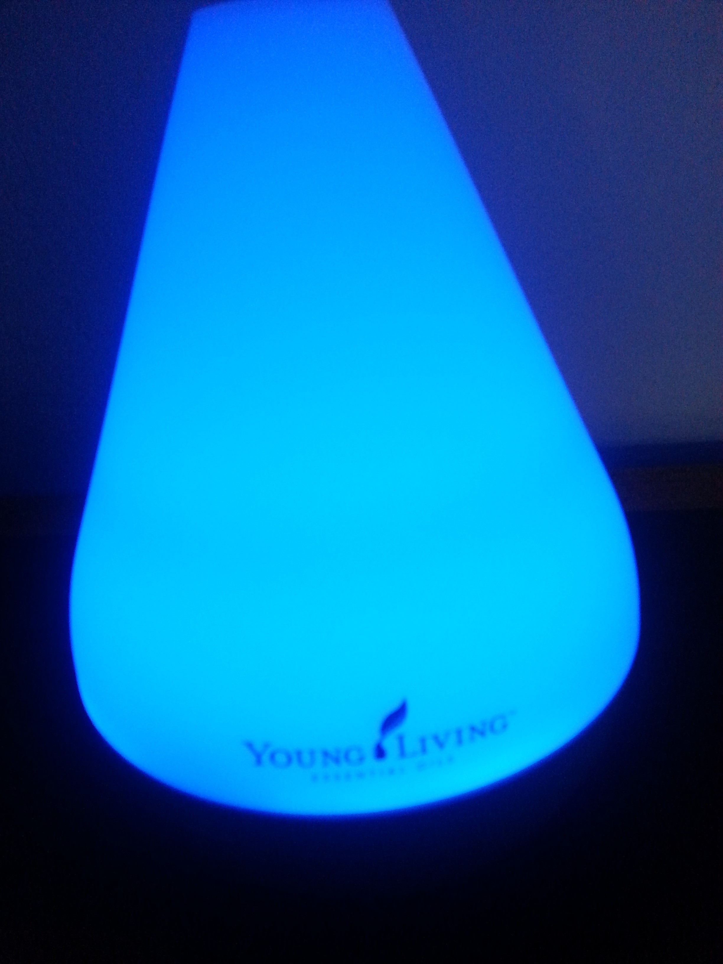 2015 Holiday Gift Guide.#Young Living Essential Oils & Dewdrop Diffuser. I can't live without you!