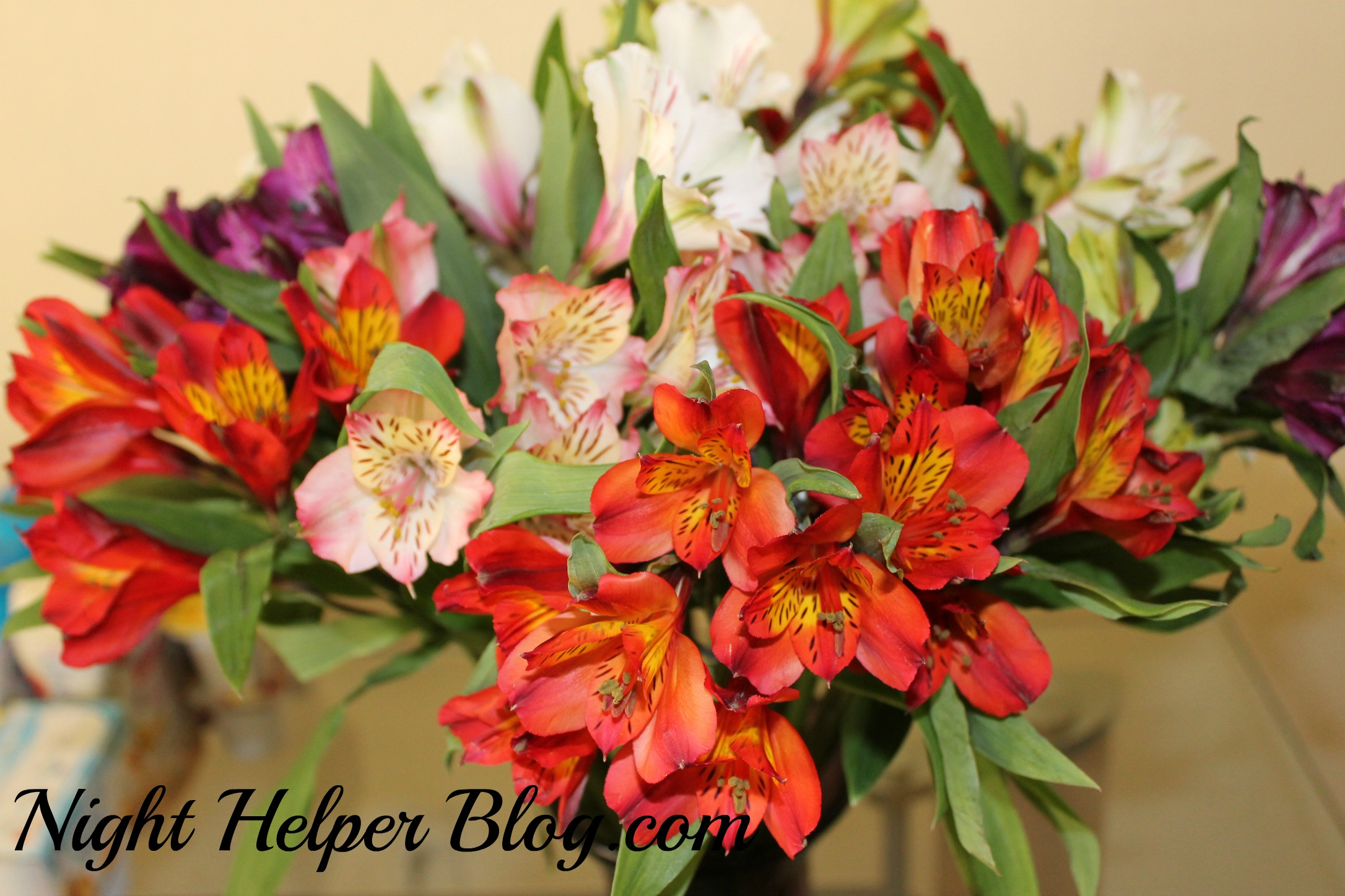Happy Mother's Day from Bloomsybox, a monthly subscription flower box!