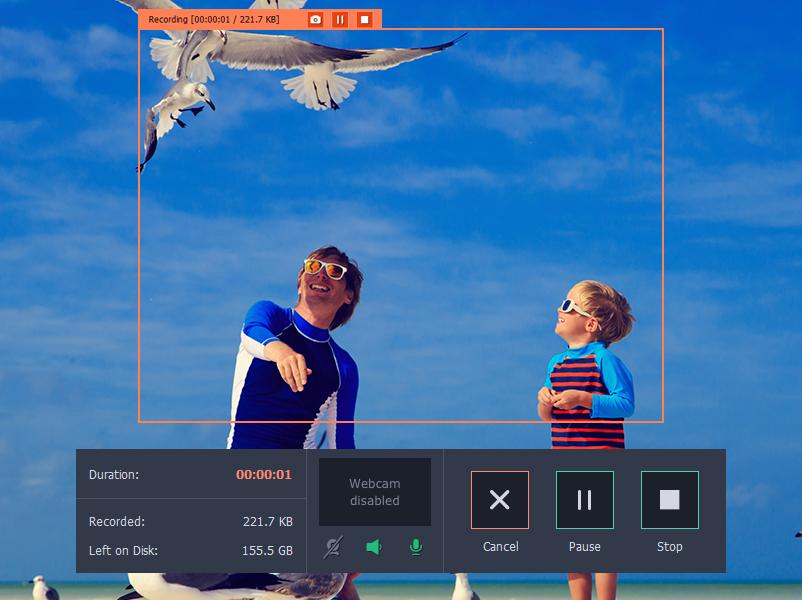 Movavi Screen Capture Review.
