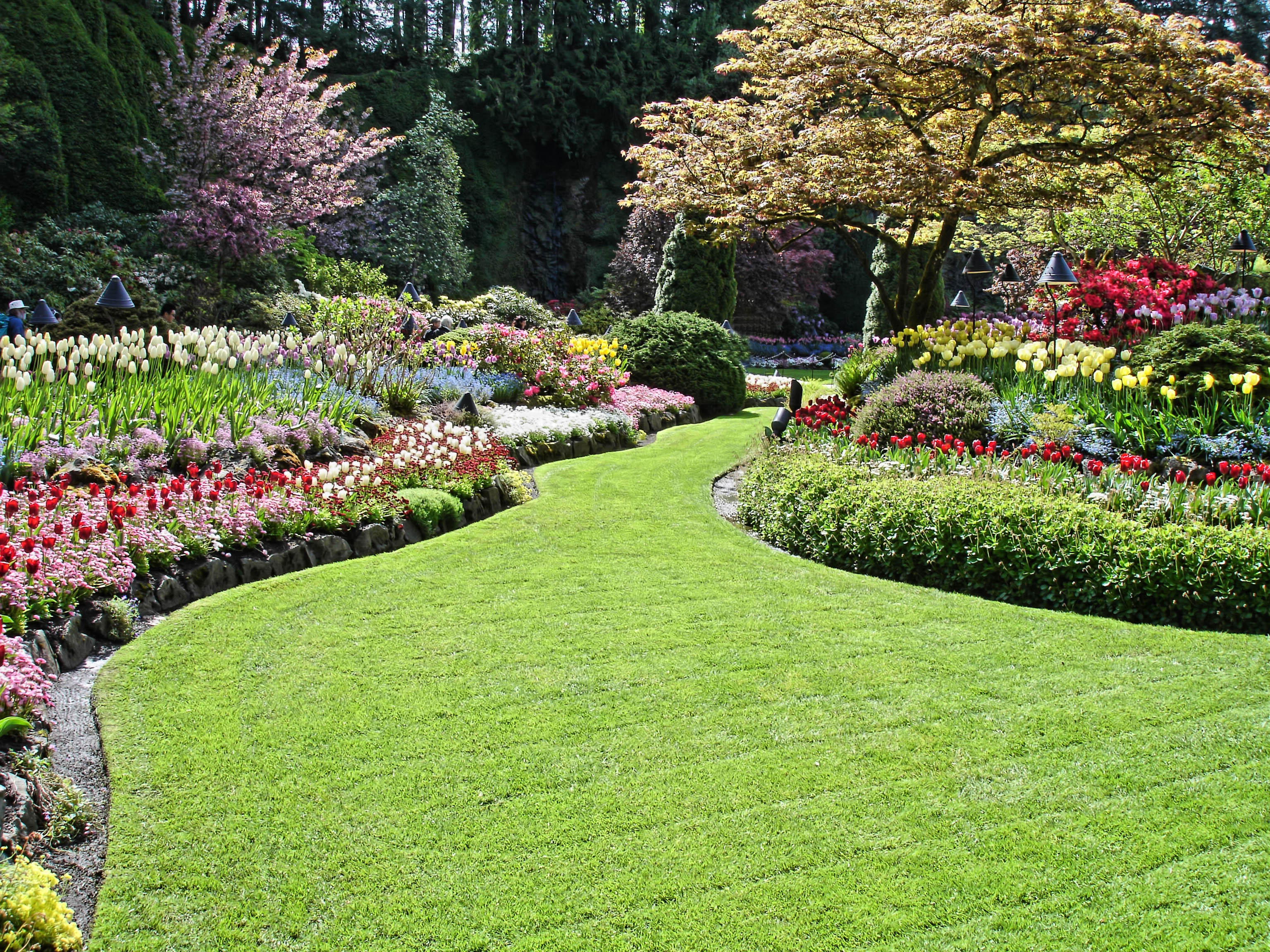 Why contract a landscaping company night helper for Garden design landscaping company