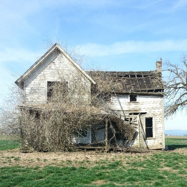Fall In Love With A Fixer-Upper