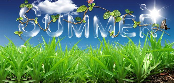 Summer Time, Allergy, Allergy, Go Away!! Honeywell True HEPA Allergen Remover