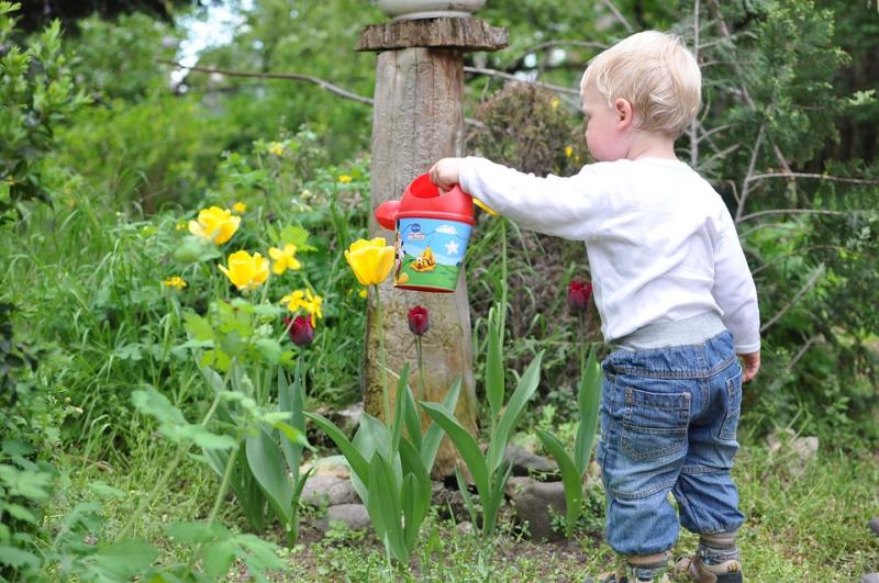 Fun Activities That Will Get Your Kids into Vegetable Gardening.