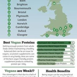 The Veganuary Guide Infographic