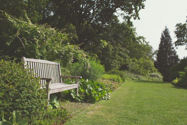 Summer Is Almost Here: Get Your Garden Ready Quick!