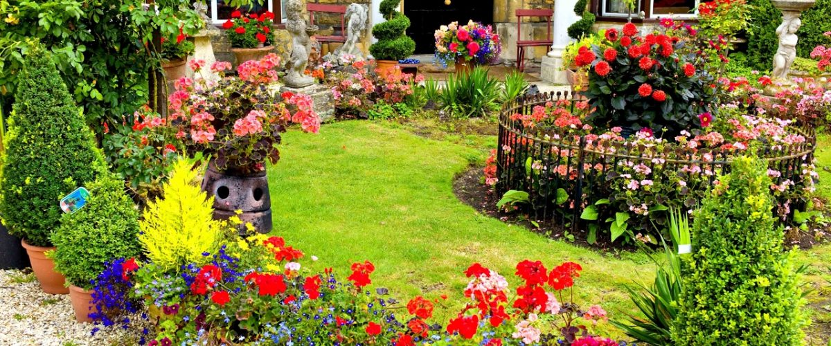 How To Create A Beautiful Garden That You Love